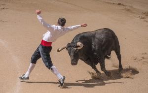 Concurso de Recortes en San Martin de la Vega 2019 con Toros de El Uno