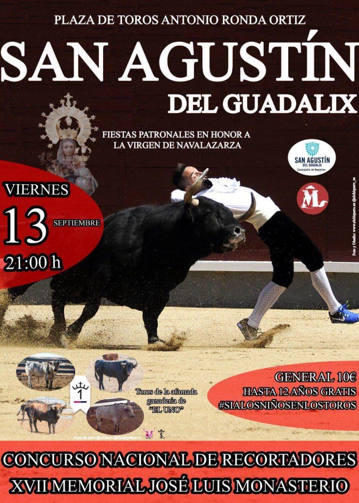 Cartel recortes de San Agustin Guadalix