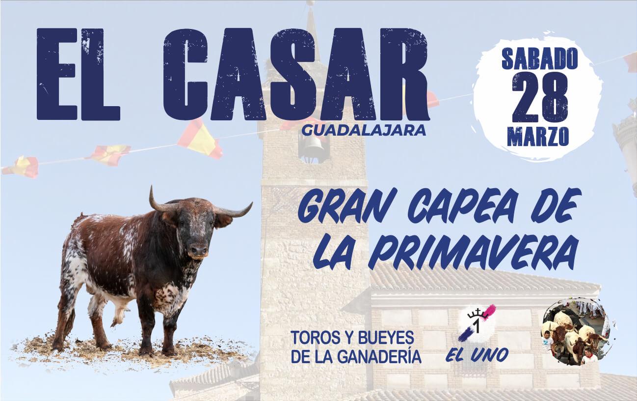 Capea de Primaver El Casar (Guadalajara)